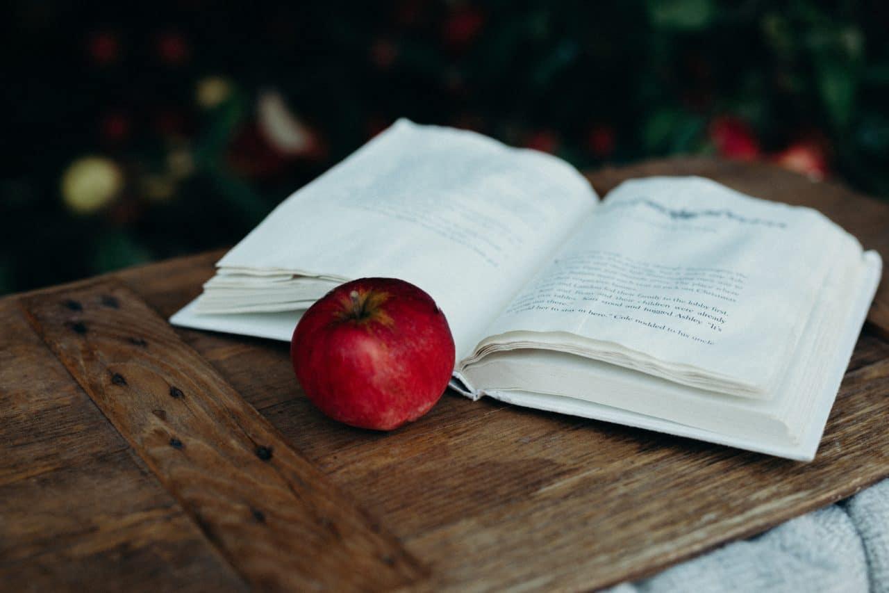 10 boktips til høstens lesestunder